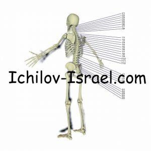 ortopediya izrailya 300x300 - Ортопедия в Израиле