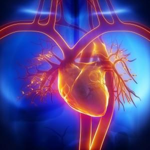 Лечение аритмии сердца в Израиле. Клиника Ихилов